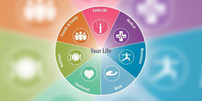 Modelo de vida saludable